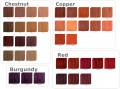 a-chestnut-copper-red-burgundy.png